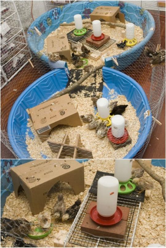 Easy DIY Chicken Brooder