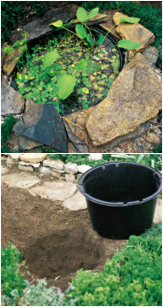 20 charming and cheap mini water garden ideas for your home and garden - page 2 of 2