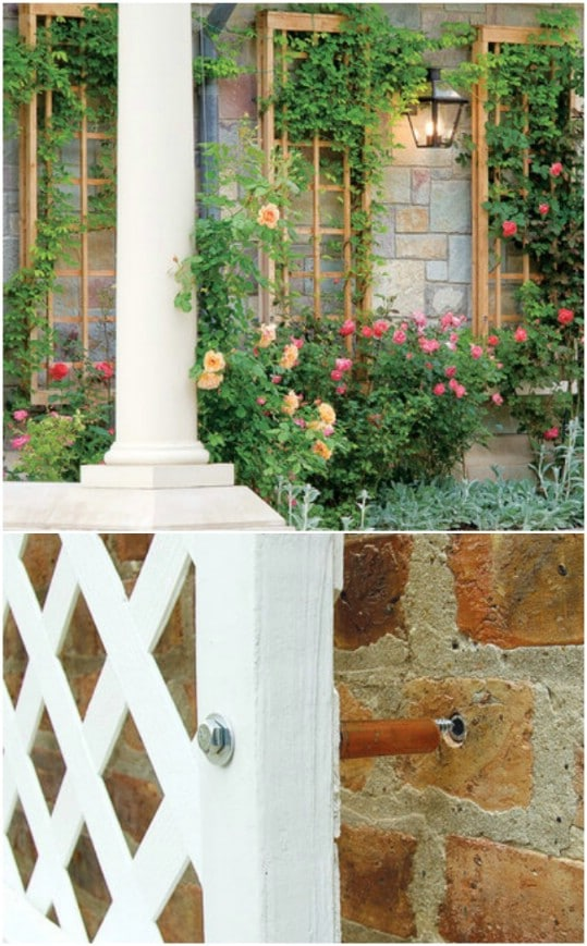 DIY Wall Attached Trellis Panels