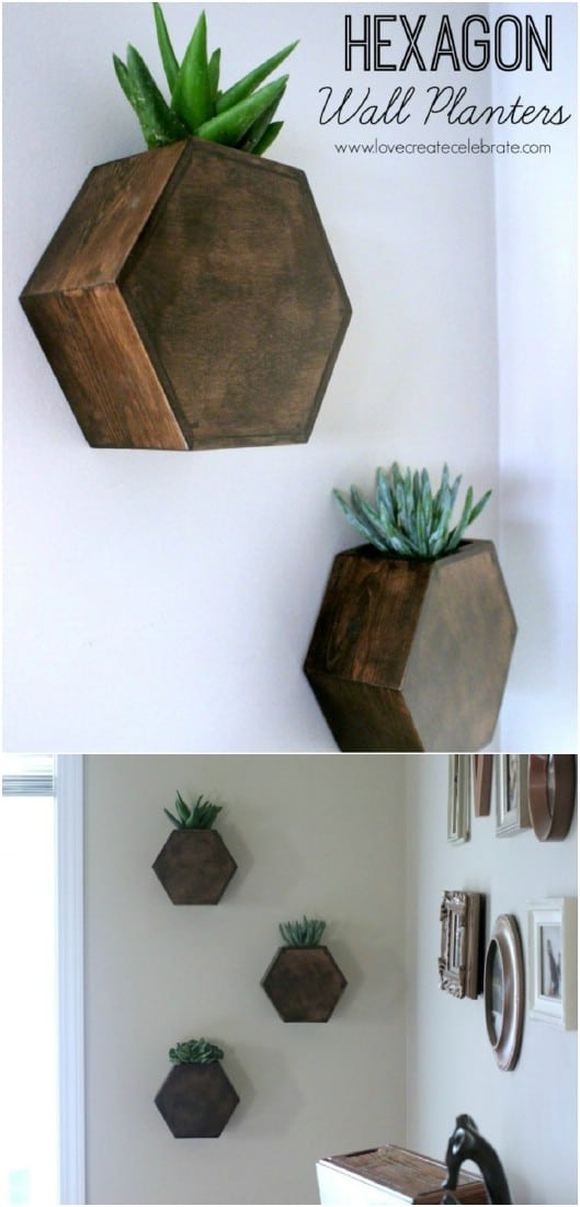 DIY Hexagon Wall Planters