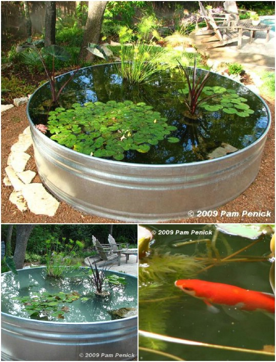 Stock Tank Mini Yard Pond
