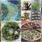 30 Captivating Backyard Succulent Gardens You Can Easily DIY