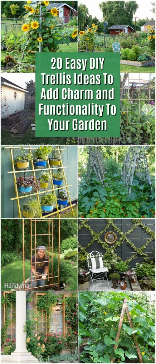 Trellis Garden Ideas 20 easy diy trellis ideas to add charm and functionality to your 20 easy diy trellis ideas to add charm and functionality to your garden diy crafts workwithnaturefo