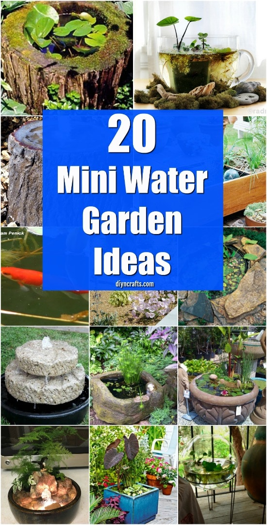 20 Charming And Cheap Mini Water Garden Ideas For Your Home And Garden {With tutorial links}