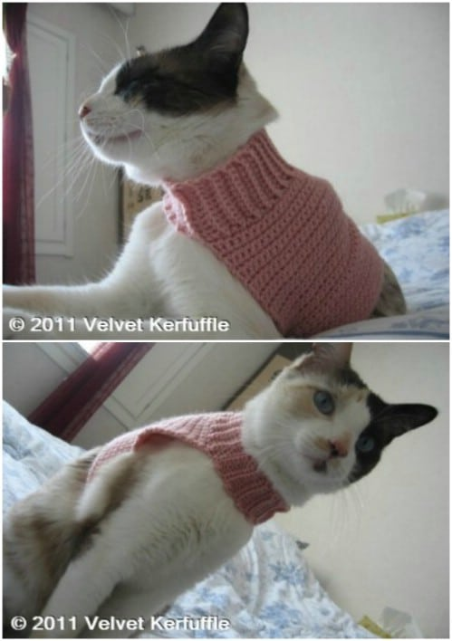 Mock Turtleneck Cat Sweater