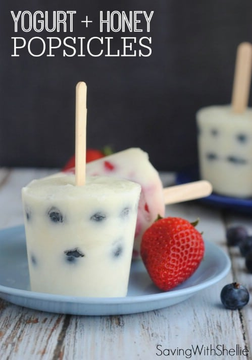 Yogurt And Honey Fruit Pops