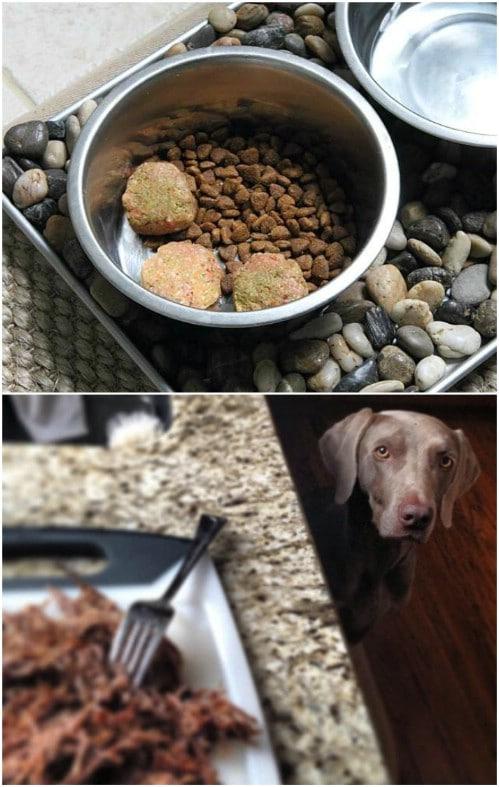 Simple Homemade Raw Dog Food