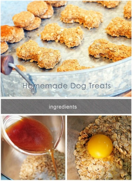 Homemade Dog Food Recipes With Ground Beef