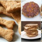 25 Lip Smacking Homemade Healthy Dog Food Recipes Your Pooch Will Love