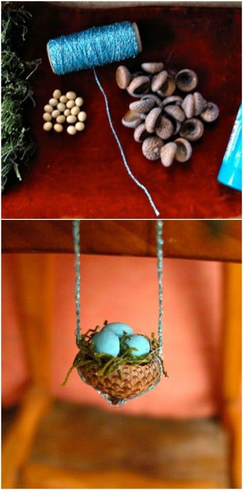 Acorn Top Bird Nest