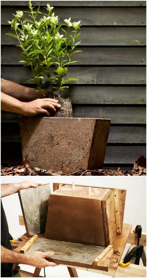 DIY Large Concrete Garden Planter