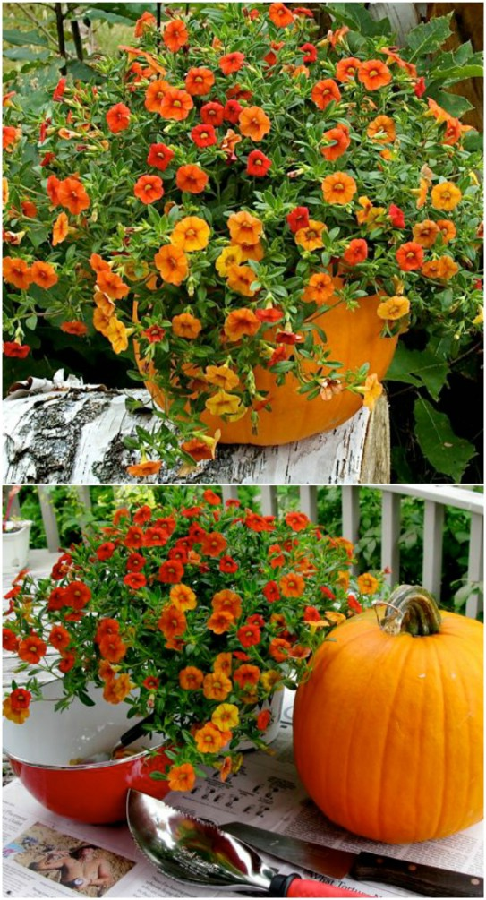20 Fall Porch Decorating Ideas