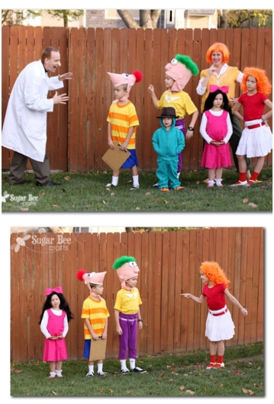 Fun Phineas And Ferb Family Costumes