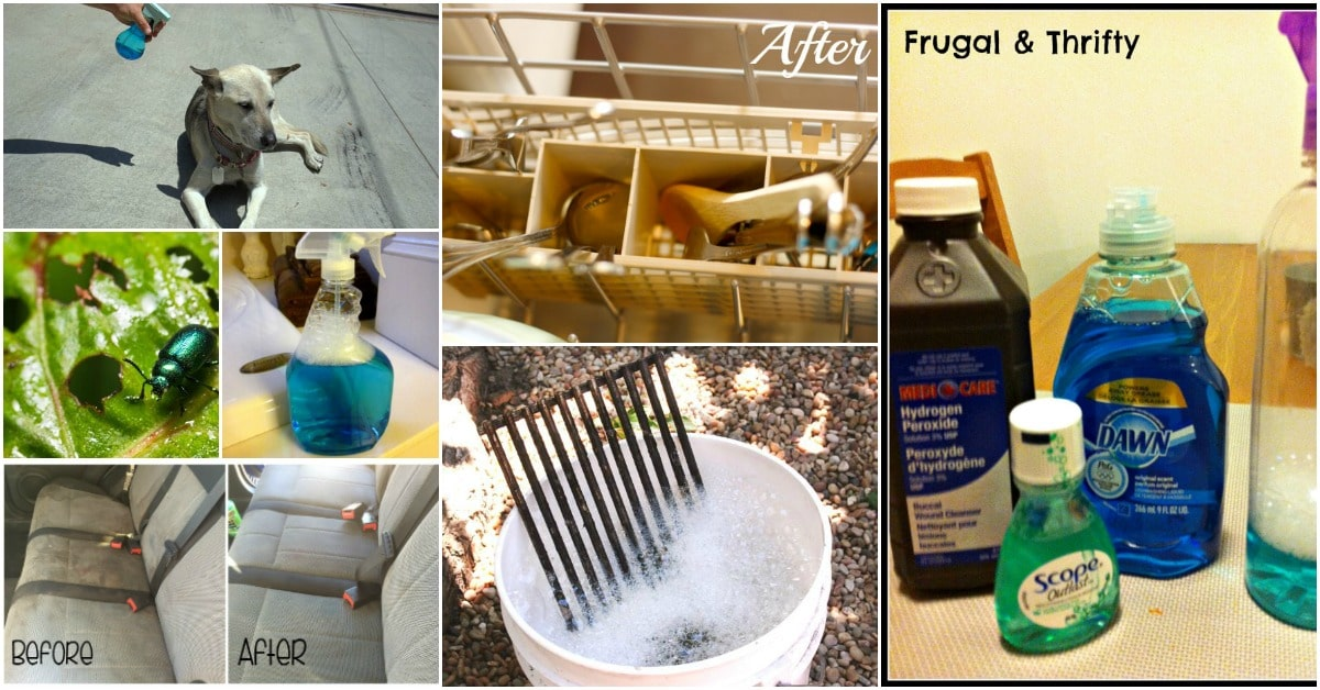 30 Frugal Uses For Dawn Dish Soap That Will Simplify Your Life