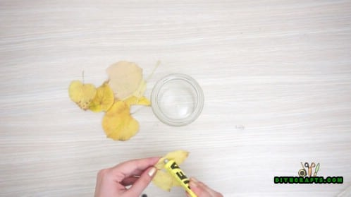 Leaf Jar - Tutorial