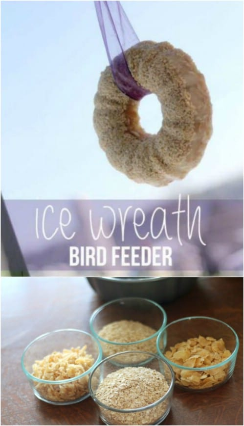 1 Edible Ice Bird Feeder