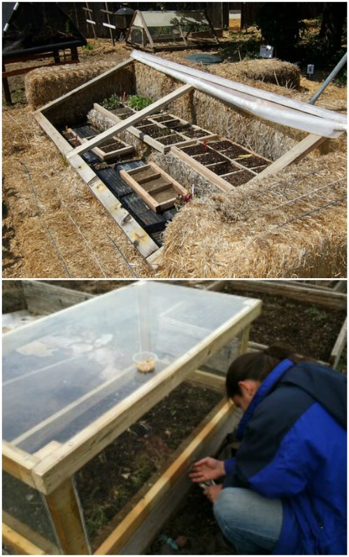 Hay Bale Cold Frame Greenhouse
