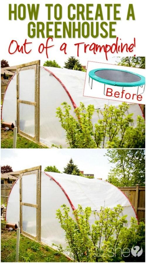 Repurposed Trampoline Greenhouse