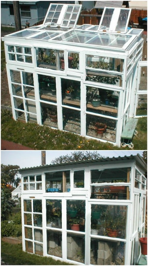 Upcycled Glass Greenhouse