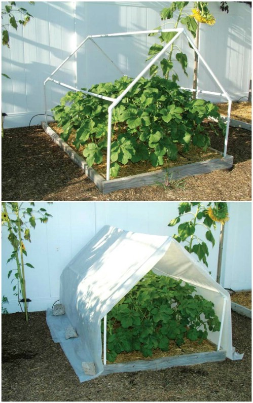 20 Free DIY Greenhouse Plans You'll Want To Make Right ...