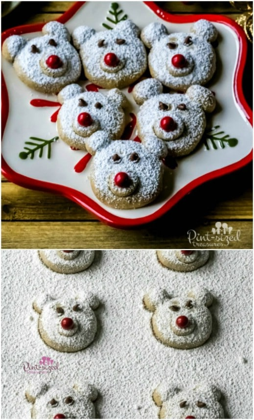 Spiced Polar Bear Christmas Cookies