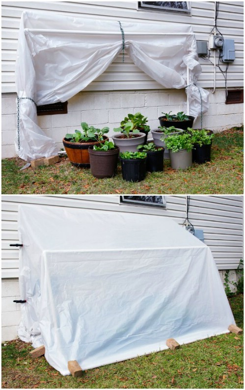 Fast And Easy Fold Down Greenhouse