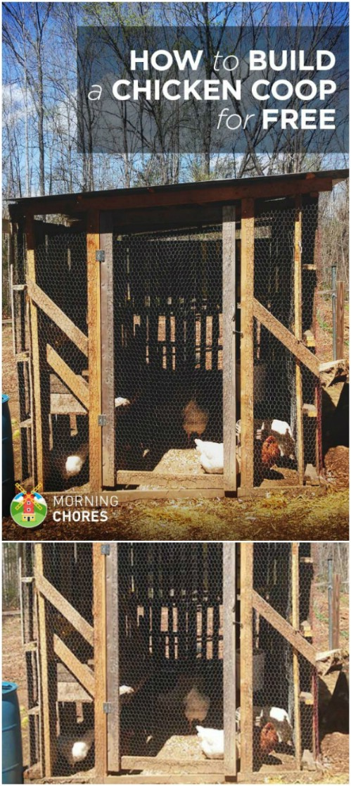 20 free diy chicken coop plans you can build this weekend - diy & crafts