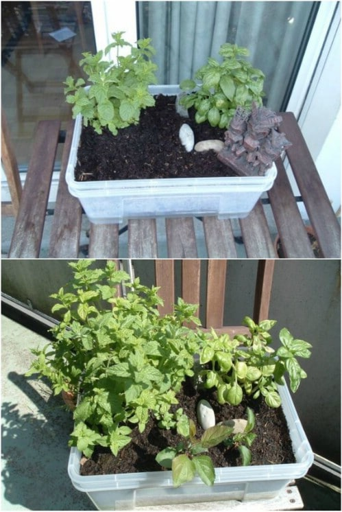 15 Diy Self Watering Planters That Make Container