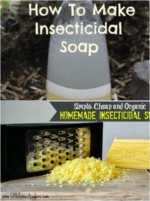 DIY Insecticidal Soap