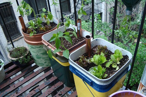 Easy Large Self Watering Containers