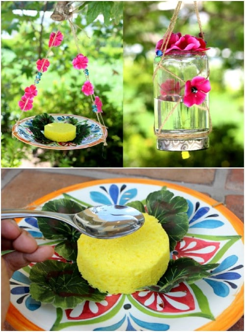 DIY Hanging Plate Feeder