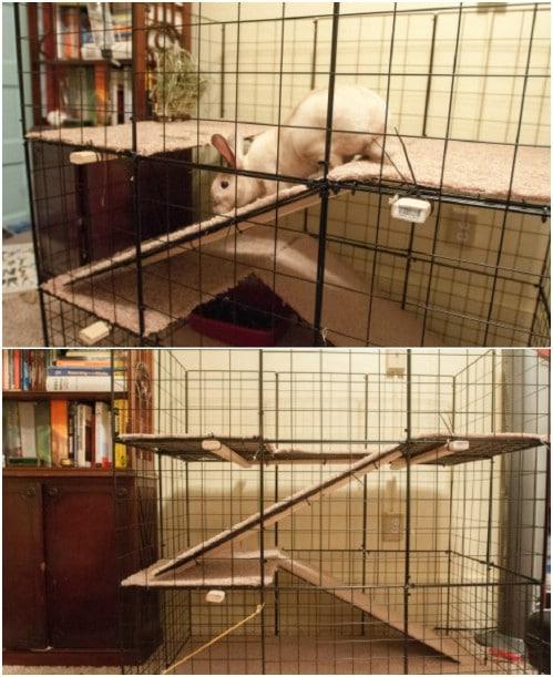 Large DIY Indoor Cage