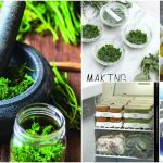 8 Easy Ways To Preserve Fresh Herbs For Use All Year Long