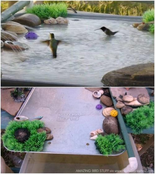 15  DIY Bird Bath Ideas To Attract Birds To Yard