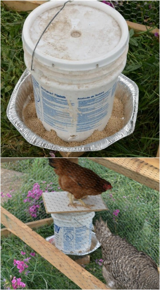 Repurposed Bucket Chicken Feeder