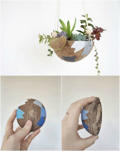 Upcycled Coconut Planter