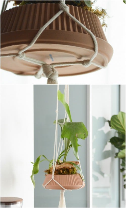 DIY Pleated Dish Hanging Planter