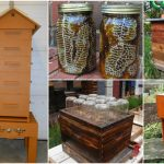 10 DIY Beehives You Can Add To Your Backyard Today