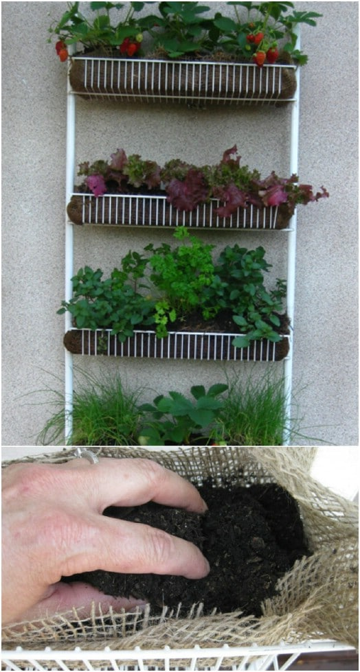 Repurposed Kitchen Spice Rack Vertical Garden