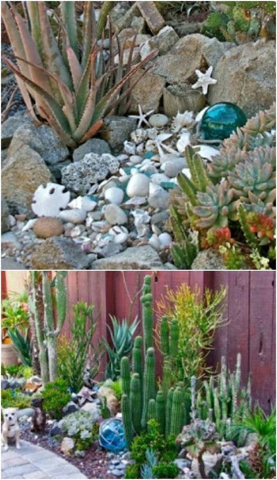 DIY Seashell Succulent Garden