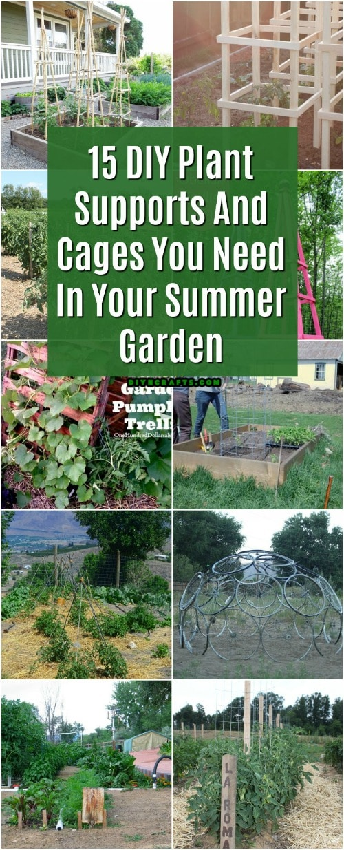 15 DIY Plant Supports And Cages You Need In Your Summer Garden