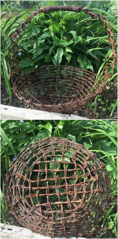 Rusted Barbed Wire Garden Basket
