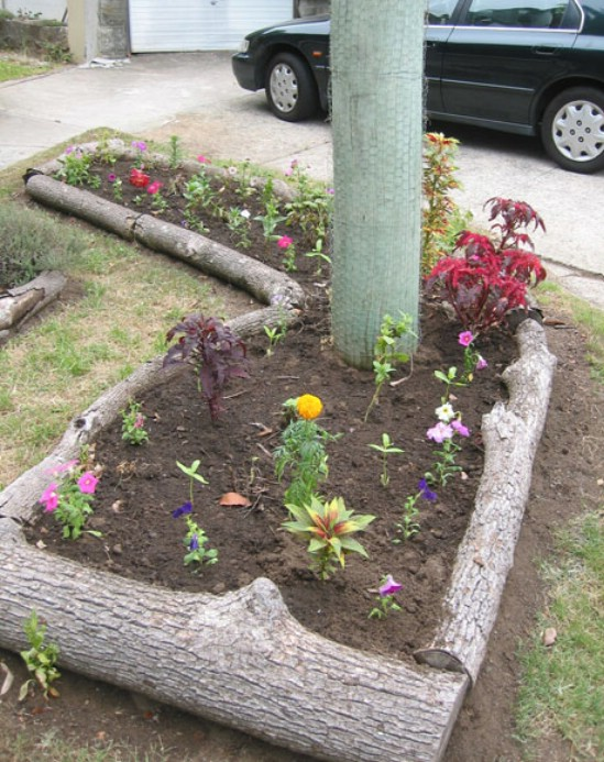 13 Great DIY Garden Edging Ideas to Set Your Garden