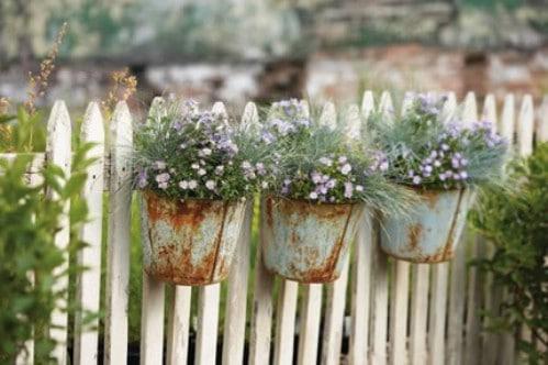 Rustic Metal Bucket Planters