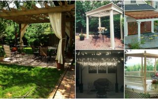 20 DIY Pergolas With Free Plans That You Can Make This Weekend
