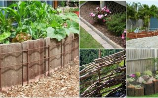 15 Easy And Decorative DIY Fencing and Edging Ideas For Your Garden