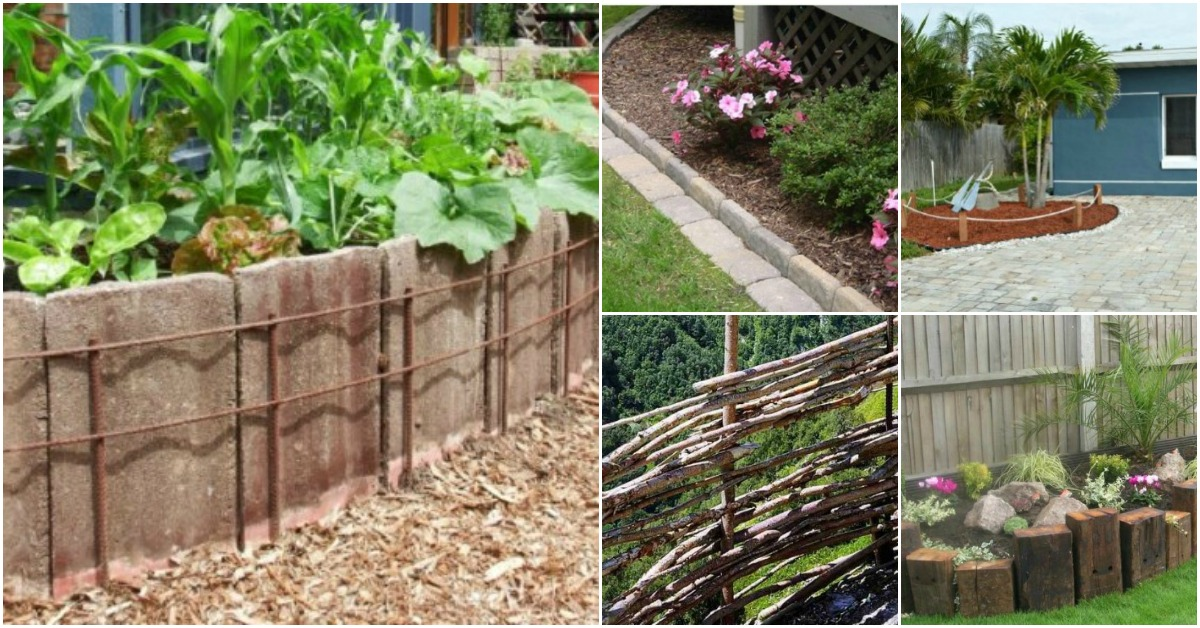 15 Easy And Decorative DIY Fencing and Edging Ideas For Your Garden ...