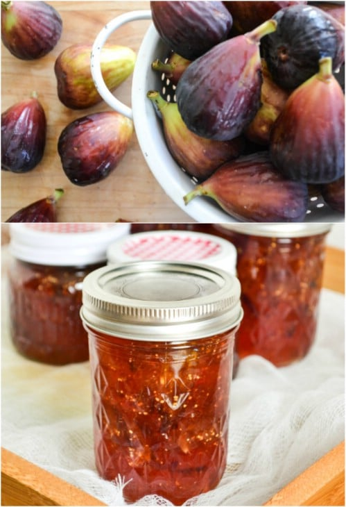 16 Delicious Homemade Fruit Jams