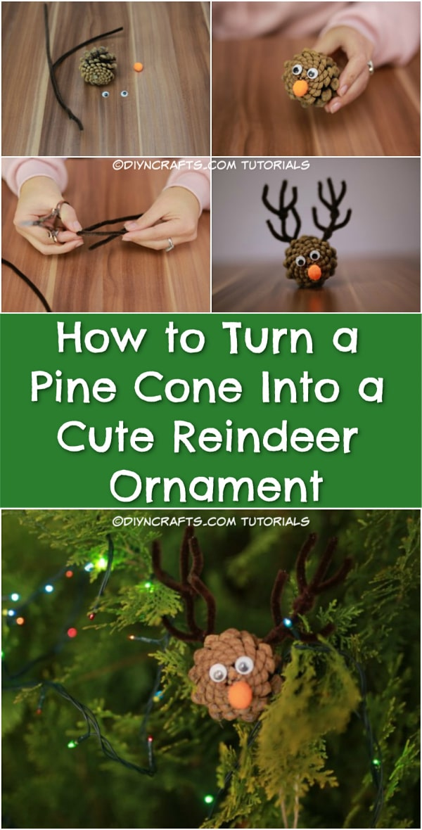 How to Turn a Pine Cone Into a Cute Reindeer - Looking for easy pinecone crafts for the holidays? In today's exclusive new video, I teach you how you can take an ordinary pinecone which fell off a tree and turn it into an adorable little reindeer with pipe cleaner antlers. This project is great fun for kids and grownups.