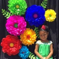 Fiesta/Cinco de Mayo Paper Flower Backdrop